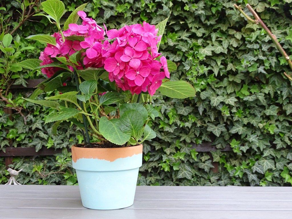 Blumentopf mit Kreidefarbe verzieren