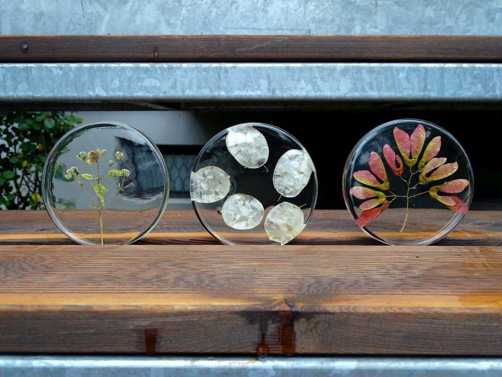 Du kannst gepresste Blätter in Kunstharz eingießen. Dafür müssen sie komplett trocken sein.