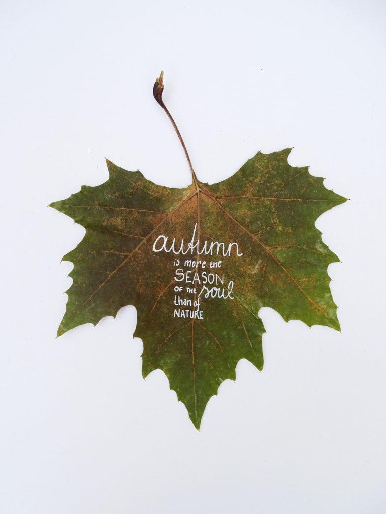 Blätter bemalen: Herbstzitate