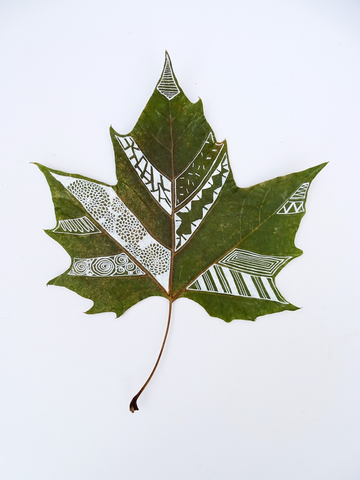 Blätter bemalen: Muster