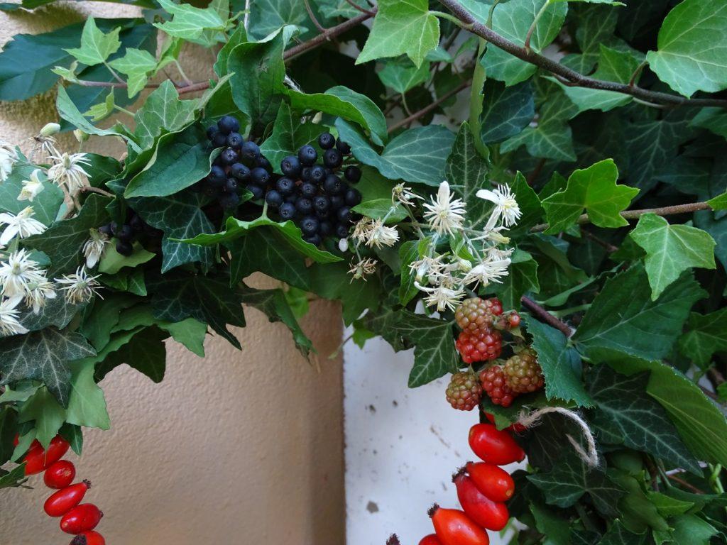 Hagebutten und Brombeeren im Herbstkranz