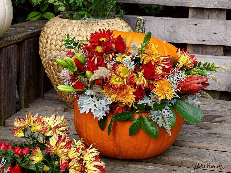 Rot, orange und grün - so bunt ist der Herbst, wenn Du einen Kürbis mit Blumen dekorieren willst.