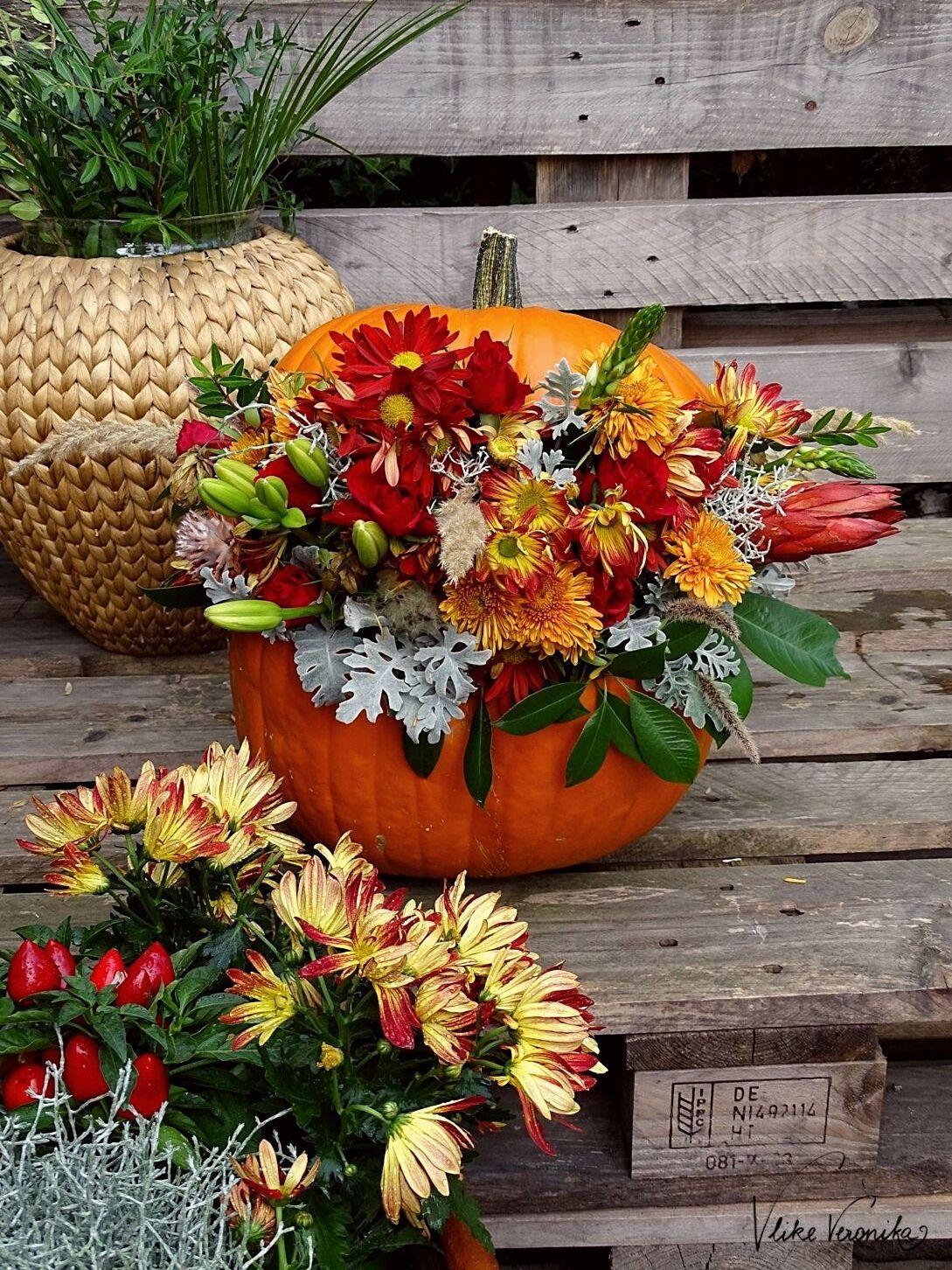 Der fertig dekorierte Kürbis sollte im Garten stehen, um bei niedrigen Temperaturen lange konsverviert zu werden.