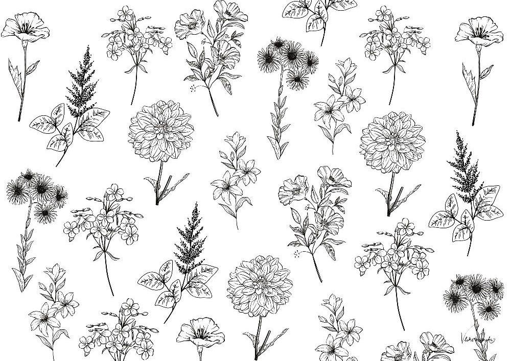 Sommerblumen-Ausmalbild für Kinder und Erwachsene. Malvorlagen für den Jahreskreis.